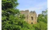 Image of Odiham Castle