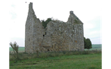 Image of Pittarthie Castle